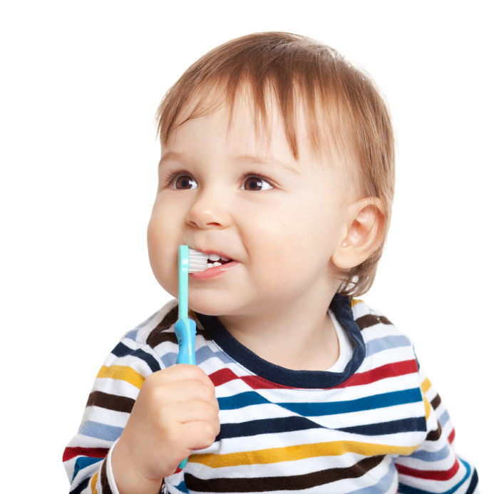 Adorable one year old child learning to brush teeth, isolated on white